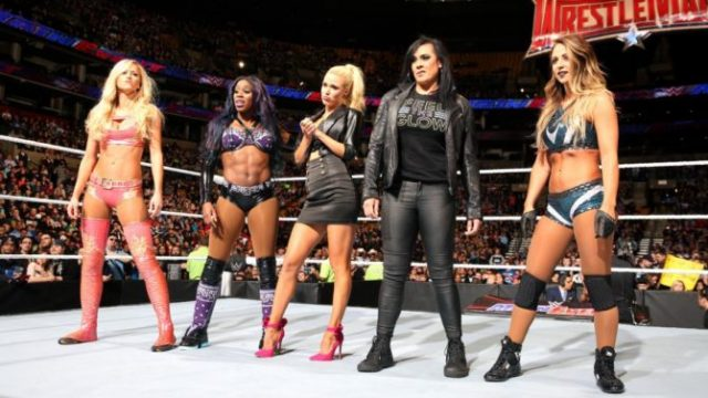 WWE womens division