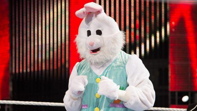 wwe the bunny