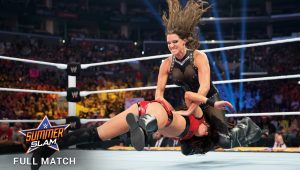 Video: Brie Bella Vs Stephanie McMahon From SummerSlam 2014