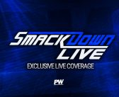 WWE SmackDown Live Results (11/13): New WWE Champion Crowned, Major Heel Turn, New Opponent For Rousey, More