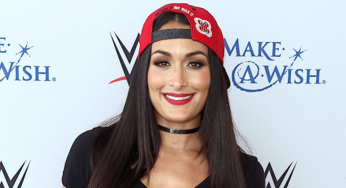 update on nikki bella possibly facing ronda rousey at wwe evolution