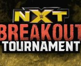 And the Winner of the 2019 NXT Breakout Tournament Is…?
